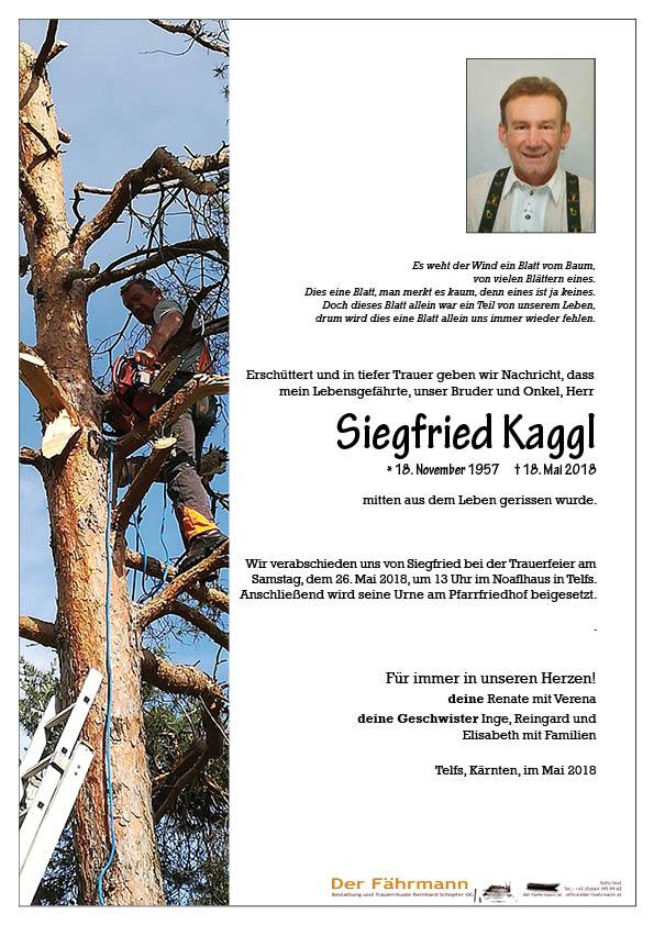parte Kaggl Siegfried